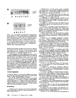icon of scanned page 1198