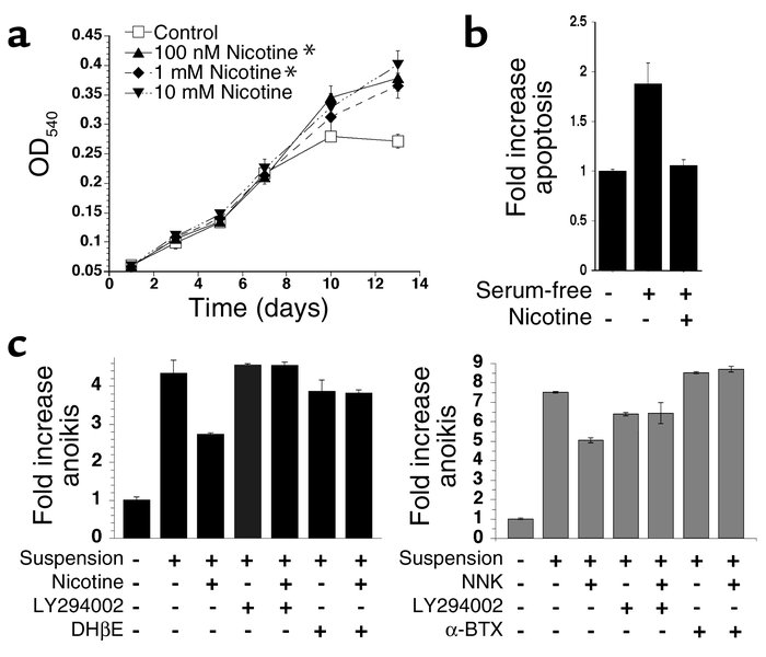 Nicotine alters NHBE phenotype. (a) Loss of contact inhibition. NHBEs we...