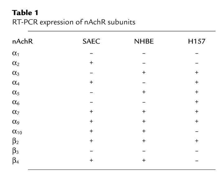 RT-PCR expression of nAchR subunits