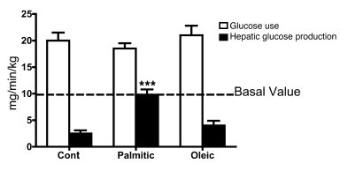 i.c.v. palmitic acid (but not oleic acid) attenuates insulin-induced sup...