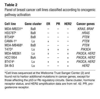 Breast carcinoma cell lines