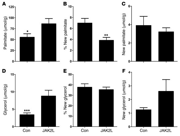 De novo lipogenesis is unchanged in 4-week-old JAK2L mice. Total palmita...