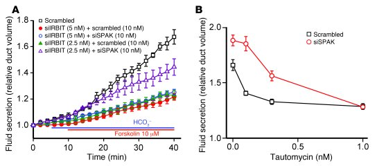 Physiological relevance of regulation of the WNK/SPAK pathway by the IRB...