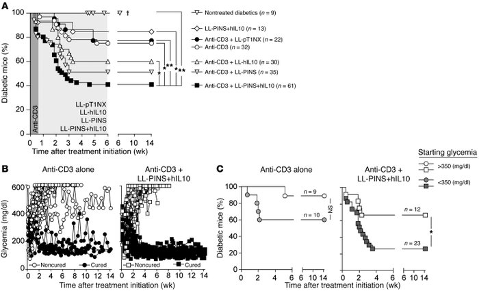 CT stably reverts autoimmune diabetes in NOD mice. Newly diagnosed diabe...