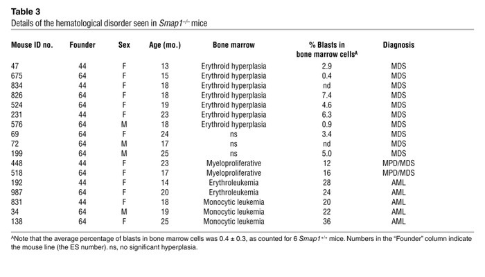 Peripheral blood counts in SMAP1–/– mice