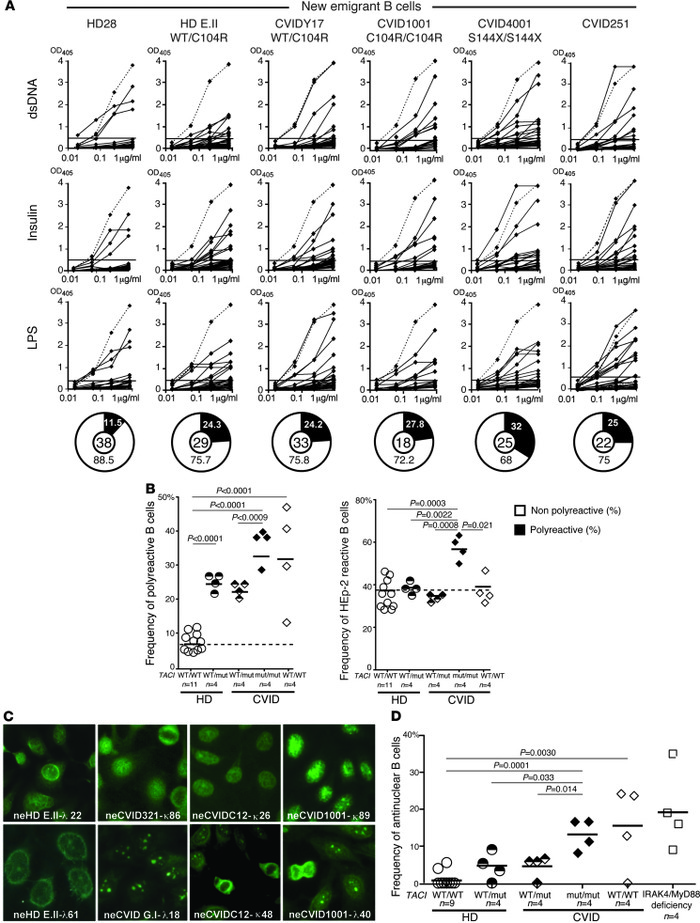 Defective central B cell tolerance checkpoint in individuals carrying TA...
