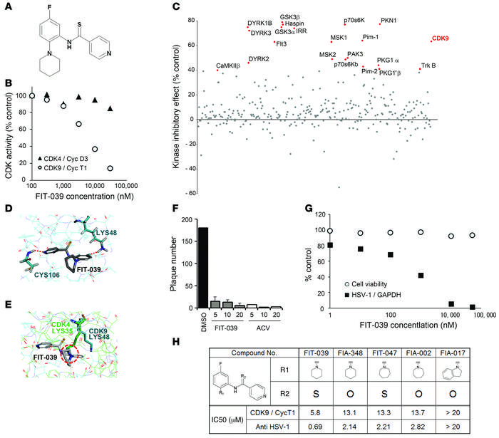 Identification of the CDK9-selective inhibitor FIT-039, which suppressed...