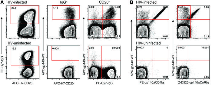 Identification of HIV-specific B cells by FACS analysis. Mature (CD10–) ...