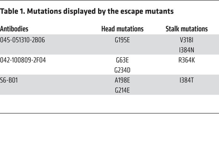 Mutations displayed by the escape mutants