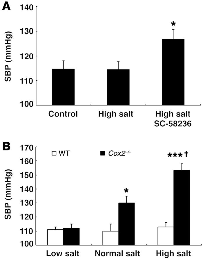 Genetic or pharmacologic COX-2 inhibition led to salt-sensitive hyperten...