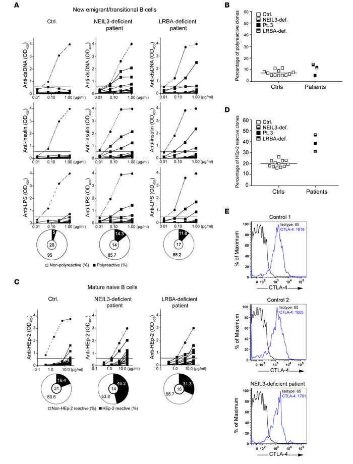 Defective peripheral B cell tolerance checkpoint in the NEIL3-deficient ...