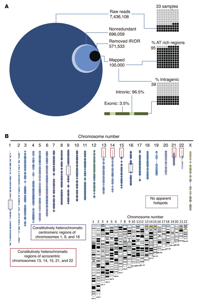 High-throughput sequencing reveals distribution and genomic location of ...