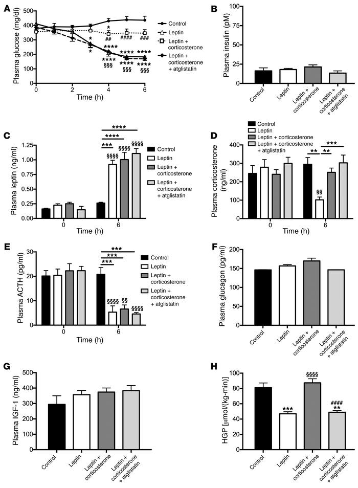 Leptin suppression of hypercorticosteronemia is required to mediate its ...