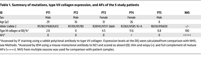Summary of mutations, type VII collagen expression, and AFs of the 5 stu...
