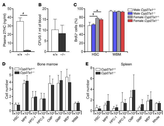 Cyp27a1 deficiency does not affect hematopoiesis under steady-state con...
