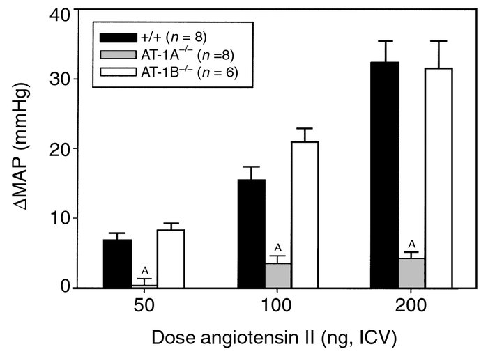 Blood pressure responses to centrally administered angiotensin II. A sum...
