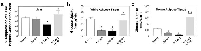 Insulin action in liver and adipose tissues during hyperinsulinemic-eugl...
