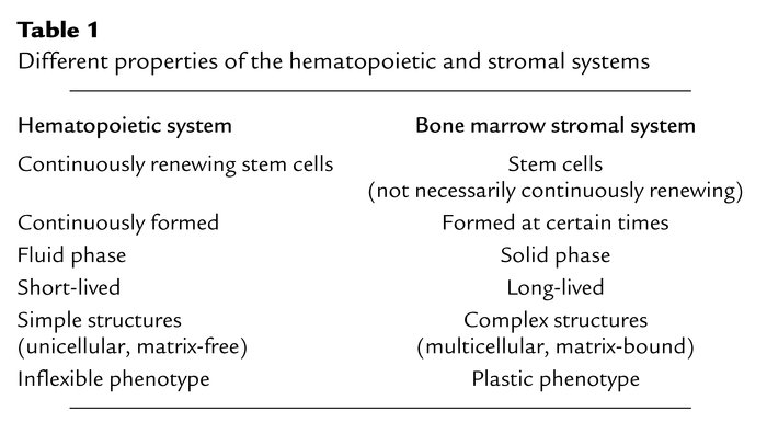 Different properties of the hematopoietic and stromal systems