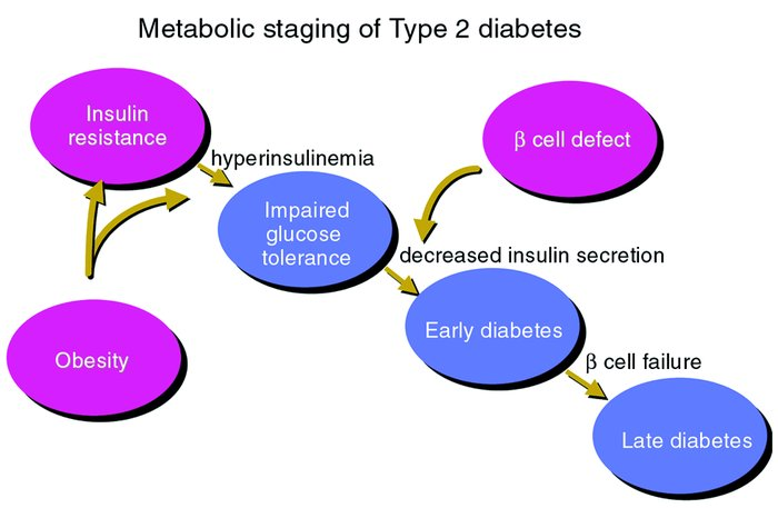 Metabolic staging of Type 2 diabetes