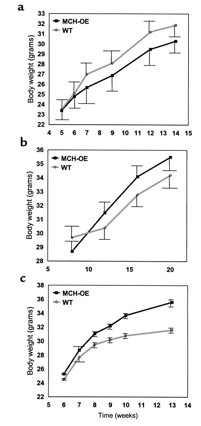 Weight curve of male MCH-transgenic heterozygotes on high-fat diet (a) s...