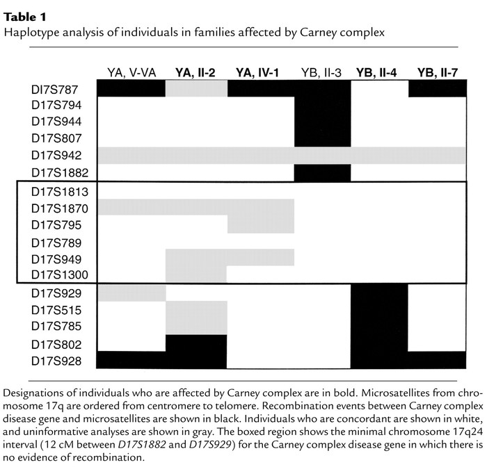 Haplotype analysis of individuals in families affected by Carney complex
