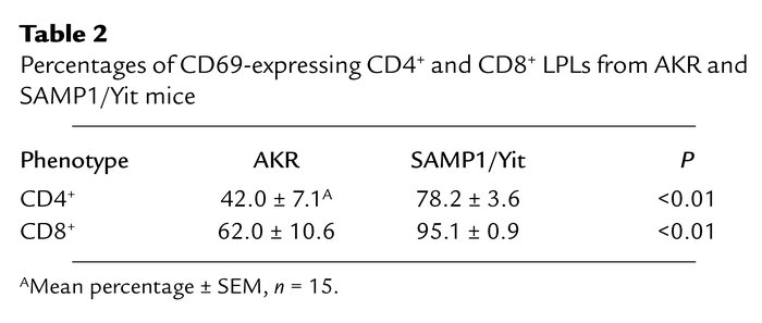 Percentages of CD69-expressing CD4+ and CD8+ LPLs from AKR and SAMP1/Yit...