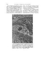 icon of scanned page 1792