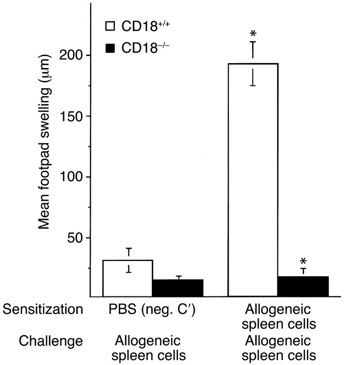 DTH in CD18–/– mice. Alloantigen-specific DTH was elicited by subcutaneo...