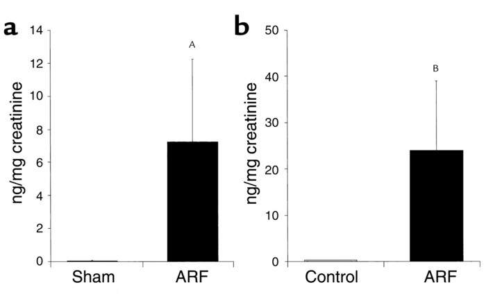 IL-18 was measured in the urine of mice with ARF by the ECL method that ...