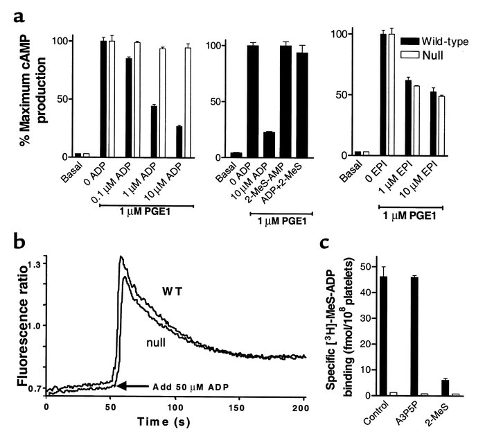 In vitro characterization of washed platelets prepared from wild-type an...