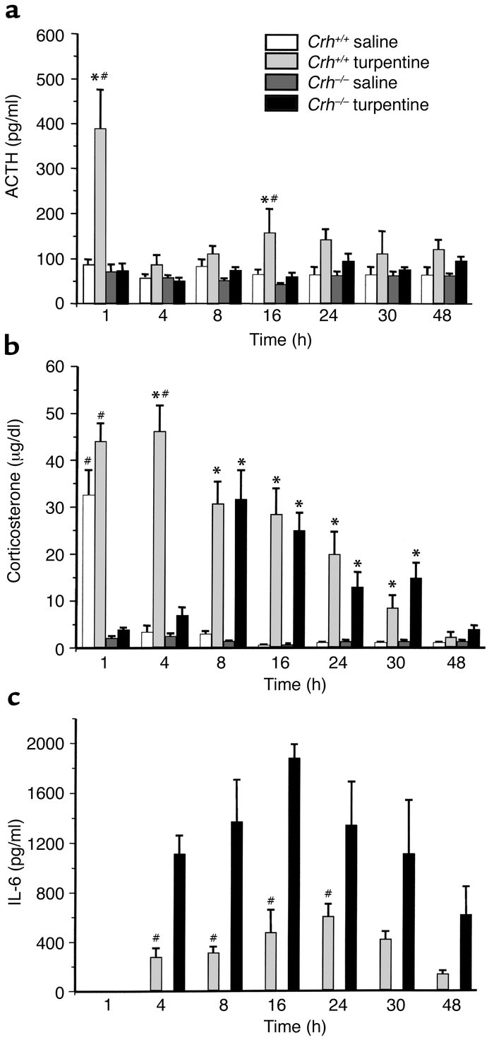 Time course of ACTH, corticosterone, and IL-6 responses to turpentine. P...