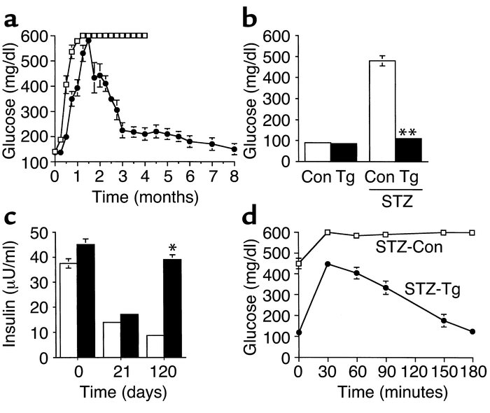 Blood glucose concentration of N4 CD-1 mice after STZ treatment. Blood g...