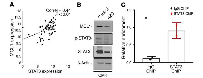 STAT3 downregulation by AZD9150 leads to downregulation of MCL1. (A) Pos...