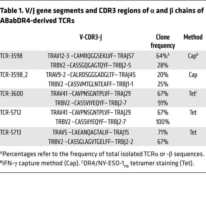 V/J gene segments and CDR3 regions of α and β chains of ABabDR4-derived ...