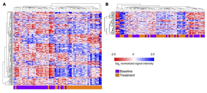 Heatmaps of hierarchical clustering of the genes differentially expresse...
