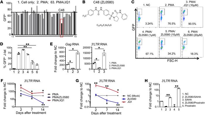 Discovery of a small molecule suppressing HIV in J-Lat cells. (A) Screen...