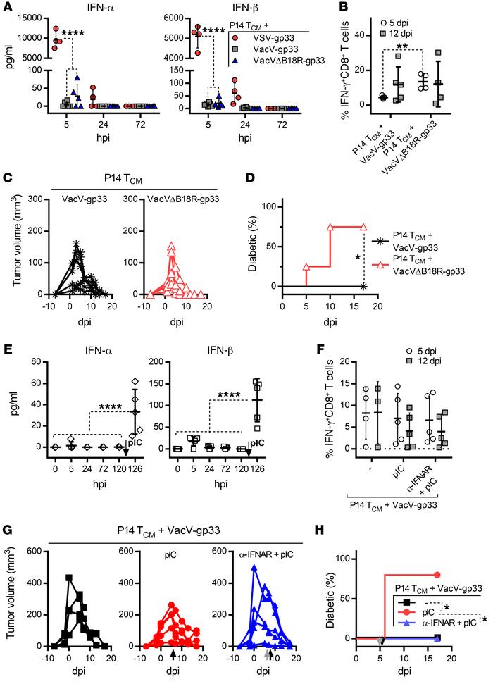 B18R-mediated neutralization of IFN-α/-β decouples tumor regression from...