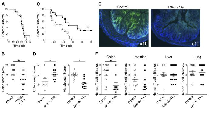 IL-7/IL-7Rα pathway controls human T cell–mediated colon inflammation. (...