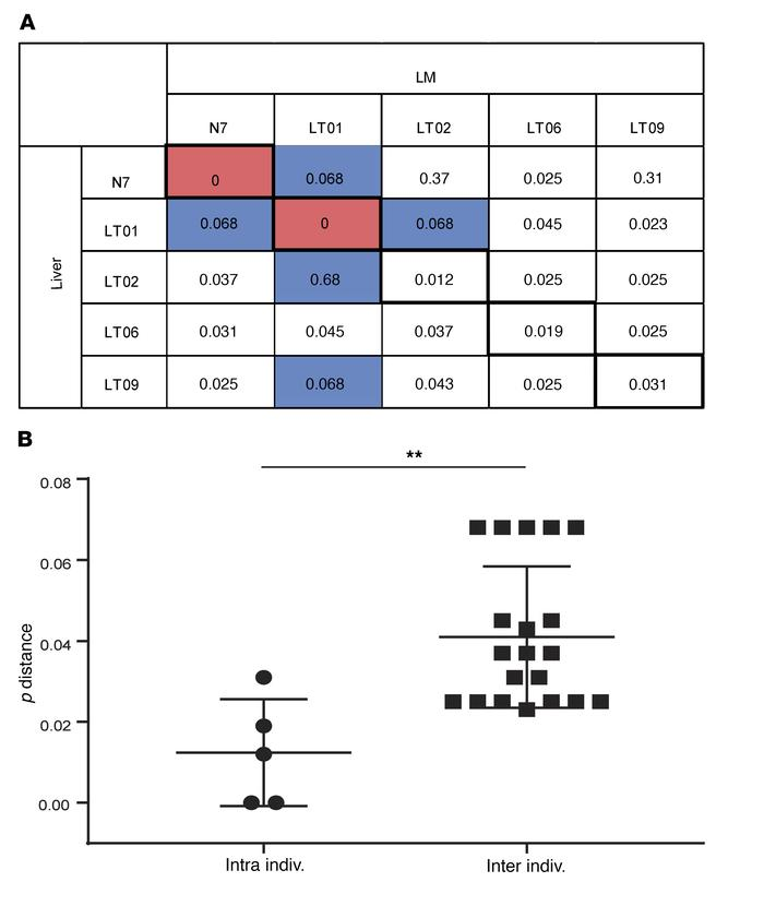 HIV-1 pol sequence analysis reveals that liver macrophages and bulk live...