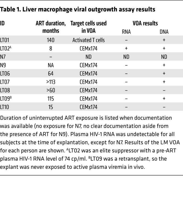 Liver macrophage viral outgrowth assay results