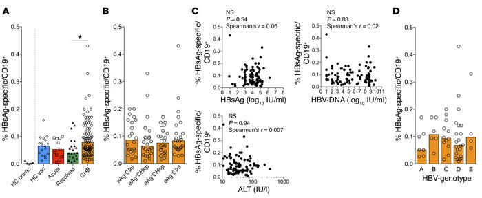 Similar frequency of HBsAg-specific B cells in diverse cohorts of HBV-in...