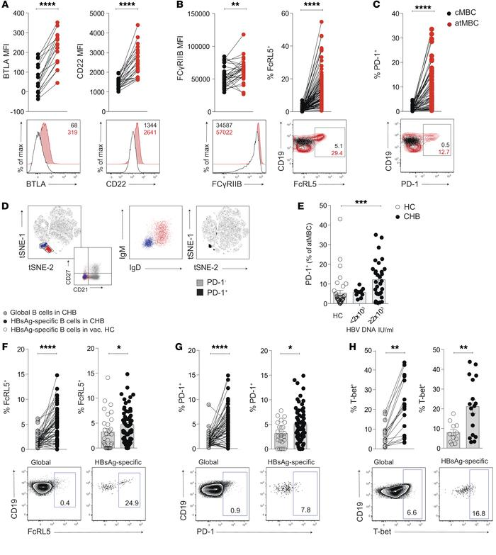 atMBC express higher levels of inhibitory receptors. (A–C) Representativ...