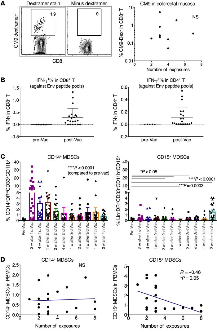 The mucosal vaccine induced Gag- and Env-specific T cell responses in th...