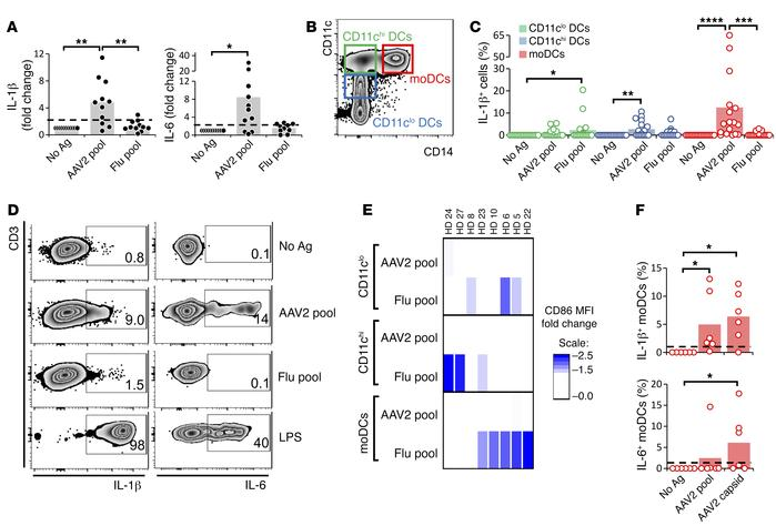 AAV capsid triggers IL-1β and IL-6 secretion in human moDCs. (A) Fold ch...