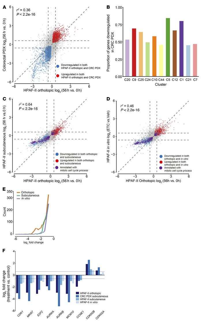 Multimodel comparison identifies core Wnt-activated genes most effective...