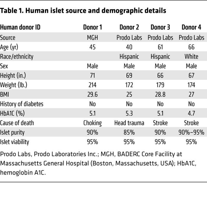 Human islet source and demographic details