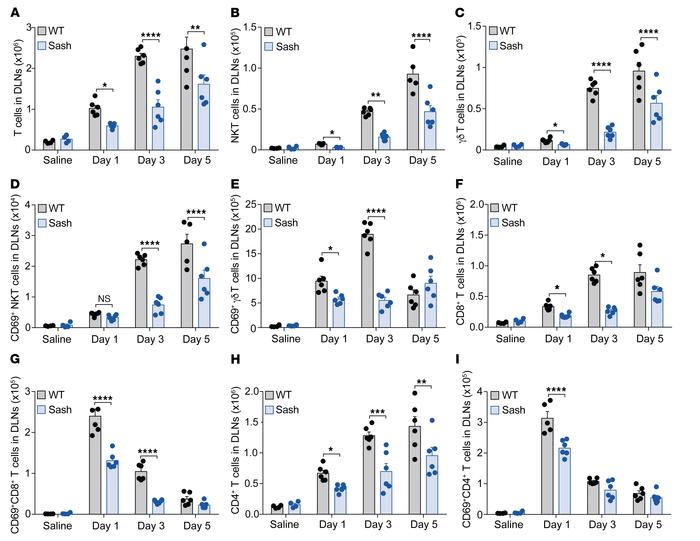 Reduced retention of multiple subsets of T cells in the DLNs and reduced...