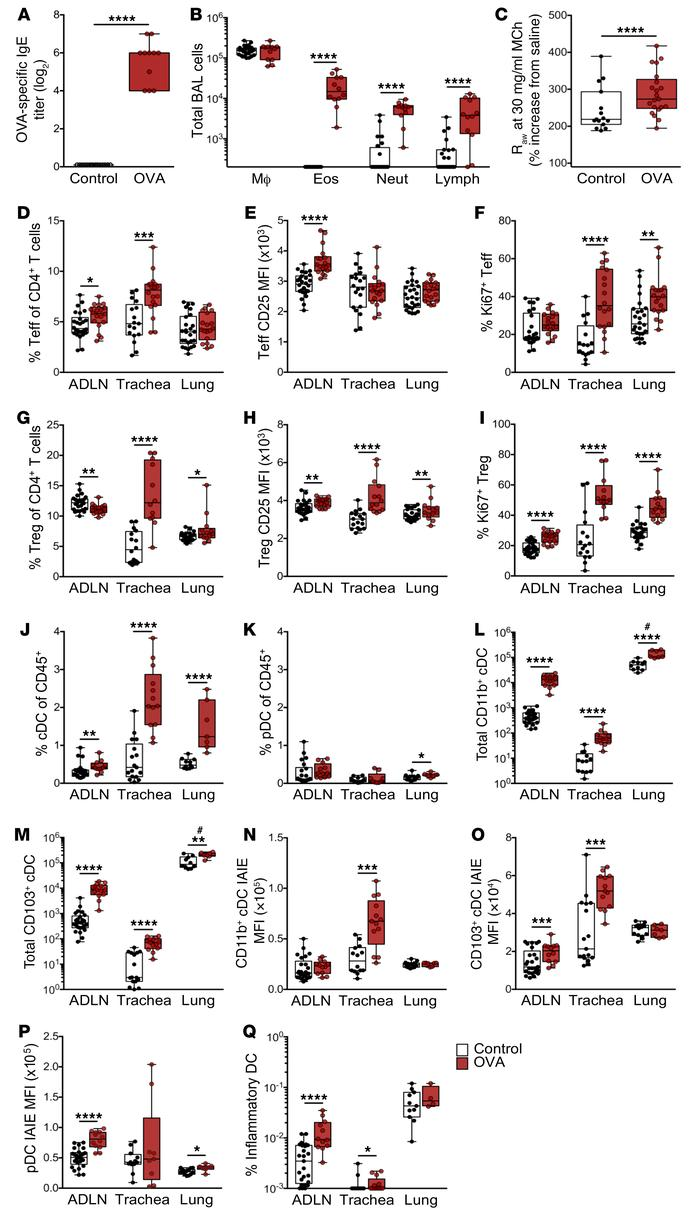 Response in early life sensitizes mice to aeroallergen challenge. (A) Se...