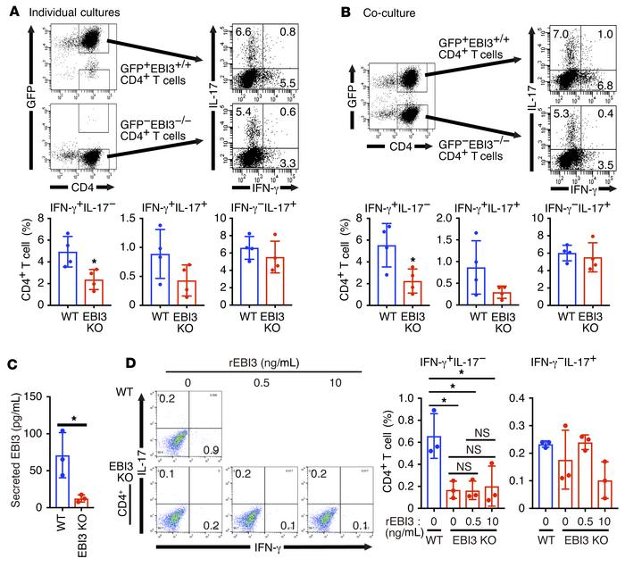 IFN-γ production in EBI3-deficient CD4+ T cells differentiated under pat...