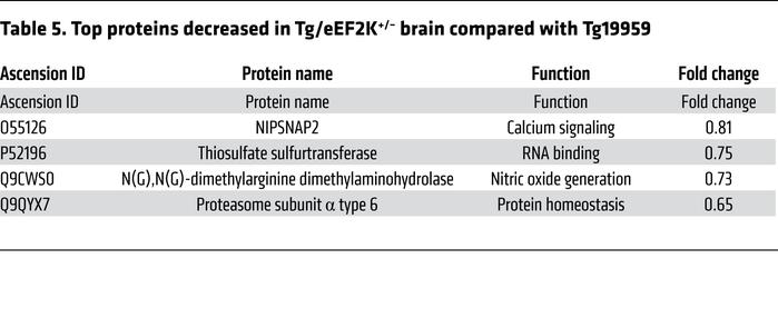 Top proteins decreased in Tg/eEF2K+/– brain compared with Tg19959